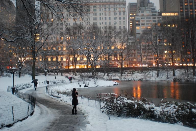 Snowy duck pond (link)
